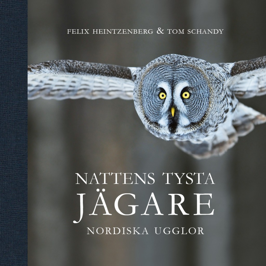 Nattens _Tysta_Jägare_omslag